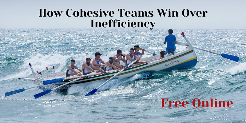how cohesive teams